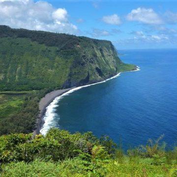 浄化効果に驚く…ハワイアンミュージック