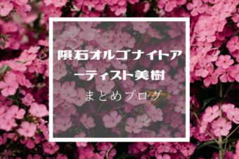 隕石オルゴナイトアクセサリー作家★美樹 まとめブログ